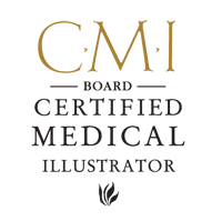 CMI Board Certified Medical Illustrator