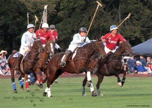 Suspended Acceleration Newport Polo