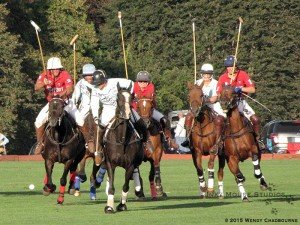 Group of polo ponies chasing the ball down field
