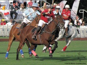 Polo ponies turning and driving the line